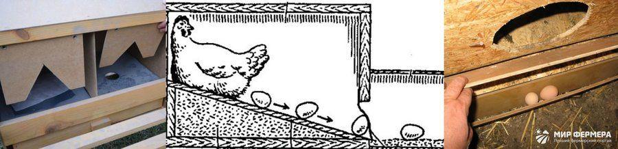 Paletlerden Tavuklar Için Kovalamak Boyutlu Farklı Tasarımların